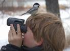 birdwatching_ok