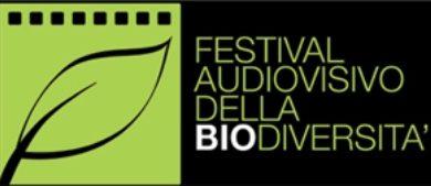 festival_bio_ok