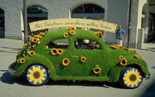 auto_fiori