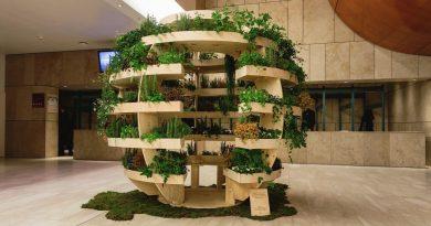 Firenze hub di sostenibilità. Intervista a Federica Borghi, ideatrice di Travel & Joy Green Urban Solution